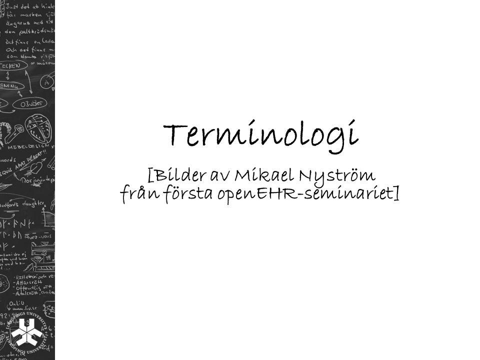 Terminologi [Bilder av Mikael Nyström från första openEHR-seminariet]